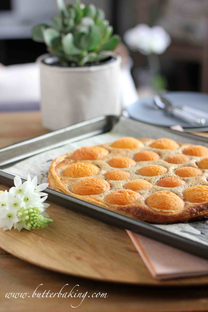 Apricot Almond Swirl Ice Cream Pie Recipes — Dishmaps